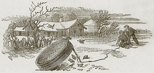 Catching Birds. Illustration for Lessons from Noble Lives (Wesleyan, c 1870).