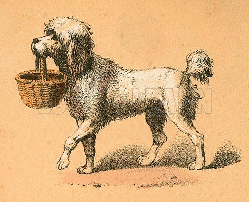 Dog with basket.  Victorian scrap.
