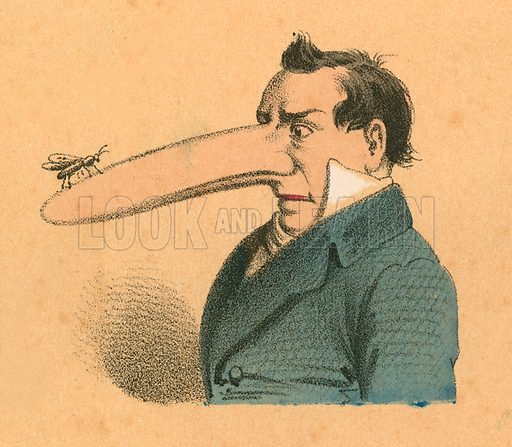 Man with fly on the end of his long nose.  Victorian scrap.