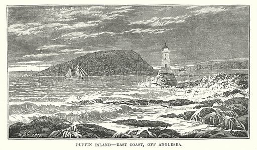 Puffin Island – East Coast, Off Anglesea. Illustration for Our Own County (Cassell, c 1880).