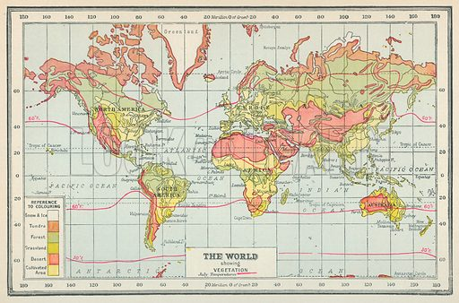 The World showing Vegetation. Illustration for Countries of the World by J A Hammerton (Fleetway, c 1925).