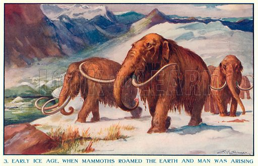 Early Ice Age, when Mammoths Roamed the Earth and Man was Arising. Illustration for Harmsworth History of the World (1907).