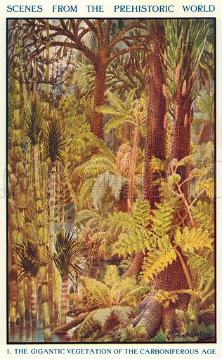 The Gigantic Vegetation of the Carboniferous Age. Illustration for Harmsworth History of the World (1907).