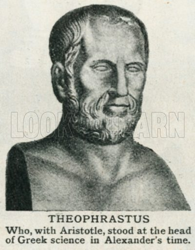 Theophrastus. Illustration for Harmsworth History of the World (1907).