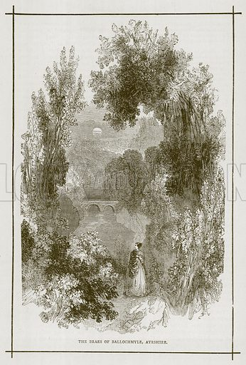 The Braes of Ballochmyle, Ayrshire. Illustration for Picturesque Scotland by Francis Watt and Andrew Carter (Frederick Warne, c 1880).
