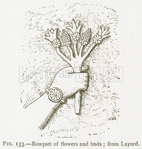 Bouquet of Flowers and Buds; from Layard. Illustration for A History of Art in Chaldaea and Assyria by Georges Perrot and Charles Chipiez (Chapman and Hall, 1884).