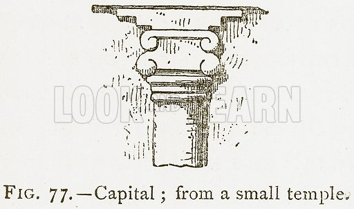 Capital; from a Small Temple. Illustration for A History of Art in Chaldaea and Assyria by Georges Perrot and Charles Chipiez (Chapman and Hall, 1884).