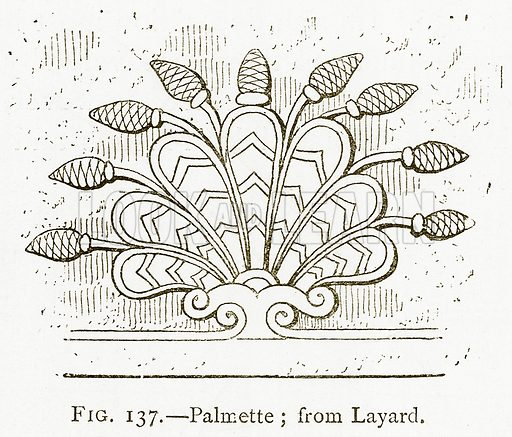 Palmette; from Layard. Illustration for A History of Art in Chaldaea and Assyria by Georges Perrot and Charles Chipiez (Chapman and Hall, 1884).