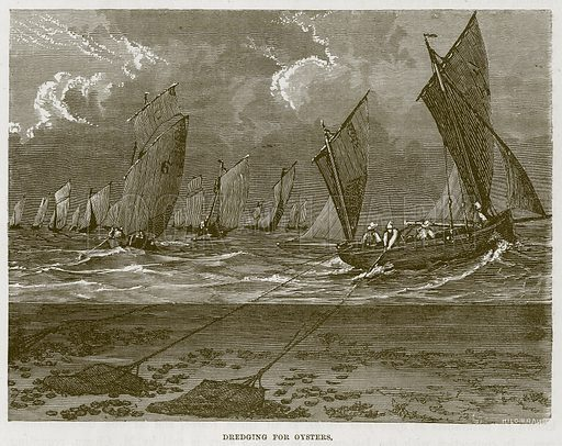 Dredging for Oysters. Illustration for The Sea by F Whymper (Cassell, c 1890).