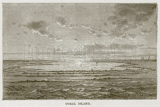 Coral Island. Illustration for The Sea by F Whymper (Cassell, c 1890).