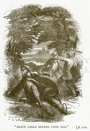 """""""Brave Carlo Sprang upon him."""" Illustration for Australian Adventures by William Kingston (George Routledge, c 1890)."""
