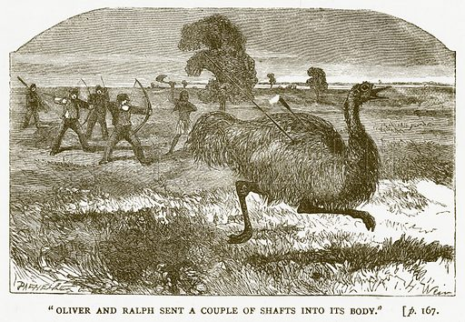 """Oliver and Ralph sent a Couple of Shafts into its Body."" Illustration for Australian Adventures by William Kingston (George Routledge, c 1890)."