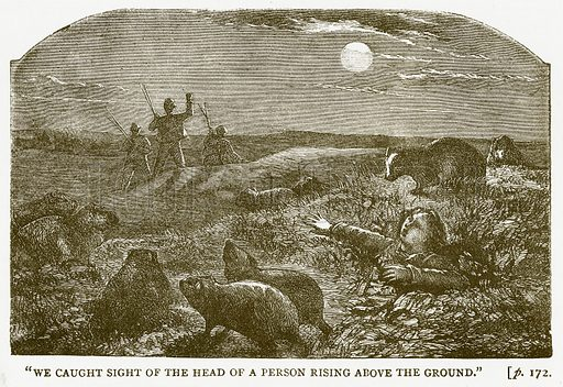 """""""We Caught Sight of the Head of a Person Rising above the Ground."""" Illustration for Australian Adventures by William Kingston (George Routledge, c 1890)."""