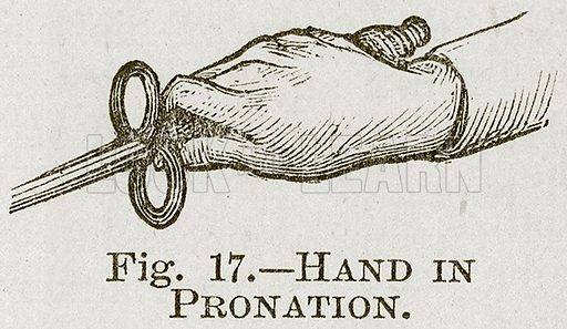 Hand in Pronation. Illustration for Cassell's Book of Sports and Pastimes (Cassell, c 1890).