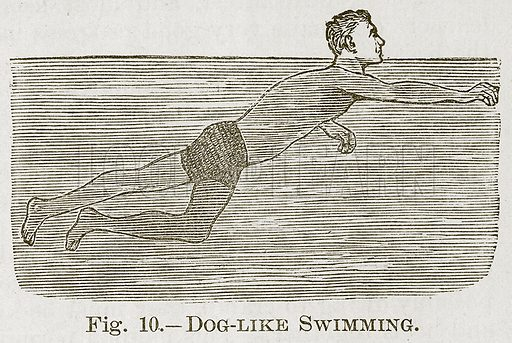 Dog-Like Swimming. Illustration for Cassell's Book of Sports and Pastimes (Cassell, c 1890).