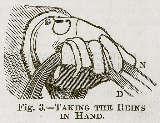Taking the Reins in Hand. Illustration for Cassell's Book of Sports and Pastimes (Cassell, c 1890).