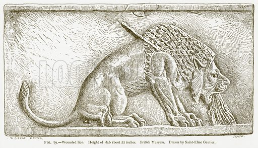 Wounded Lion. Illustration from A History of Art in Chaldaea and Assyria by Georges Perrot and Charles Chipiez (Chapman and Hall, 1884).