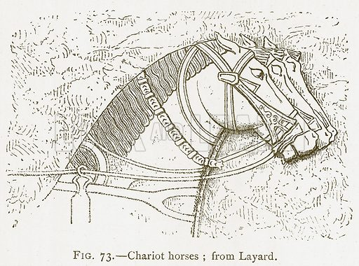 Chariot Horses; from Layard. Illustration from A History of Art in Chaldaea and Assyria by Georges Perrot and Charles Chipiez (Chapman and Hall, 1884).