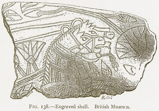 Engraved Shell. British Museum. Illustration from A History of Art in Chaldaea and Assyria by Georges Perrot and Charles Chipiez (Chapman and Hall, 1884).