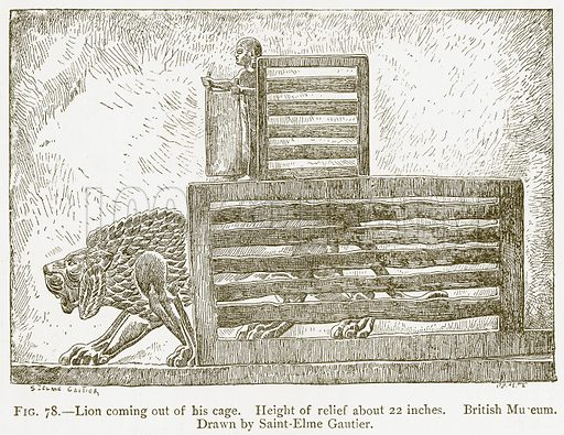 Lion coming out of his Cage. Illustration from A History of Art in Chaldaea and Assyria by Georges Perrot and Charles Chipiez (Chapman and Hall, 1884).