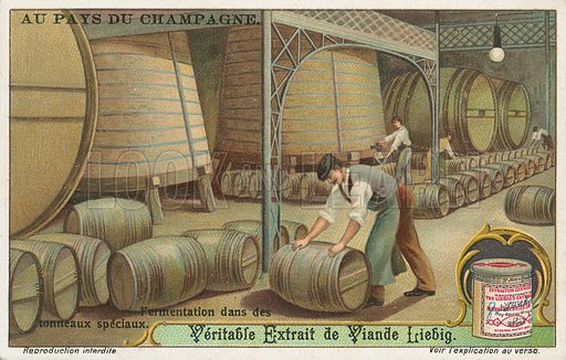 Champagne. Liebig card (early 20th century).