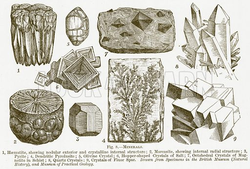 Minerals. 1, Haematite, showing Nodular Exterior and Crystalline Internal Structure; 2, Marcasite, showing Internal Radial Structure; 3, Pyrite; 4, Dendritic Pyrolusite; 5, Olivine Crystals of Fluor Spar. Illustration for The New Popular Educator (Cassell, 1891).