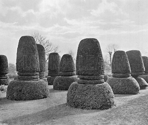 The Twelve Apostles. Photograph in Gardens Old and New Vol III (Country Life, c 1910).