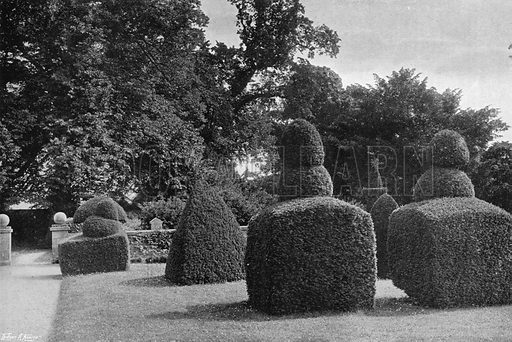 On the South Lawn. Photograph in Gardens Old and New Vol III (Country Life, c 1910).