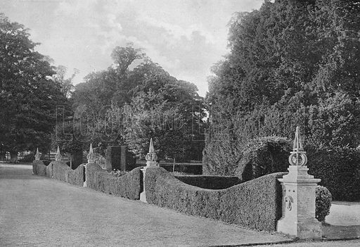 Divisions of Yew. Photograph in Gardens Old and New Vol III (Country Life, c 1910).