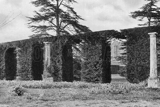 """""""A Stately Arched Hedge."""" Photograph in Gardens Old and New Vol III (Country Life, c 1910)."""
