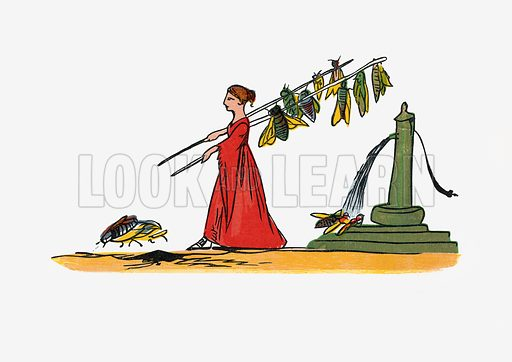 There was a Young Lady of Troy, whom several large Flies did annoy.  Illustration for A Book of Nonsense (Frederick Warne, c 1875).  Colouring probably done by Edward Lear himself.