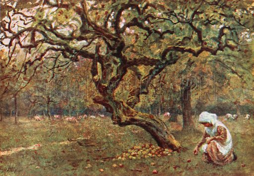 The Apple Orchard. Illustration for Happy England by Marcus B Huish (A & C Black, 1909).