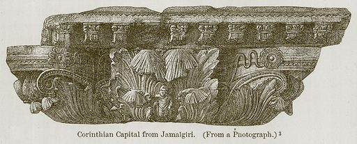 Corinthian Capital from Jamalgiri. Illustration for History of Indian and Eastern Architecture by James Fergusson (John Murray, 1876).