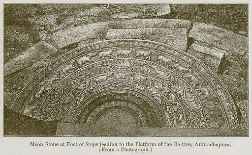 Moon Stone at Foot of Steps Leading to the Platform of the Bo-Tree, Anuradhapura. Illustration for History of Indian and Eastern Architecture by James Fergusson (John Murray, 1876).