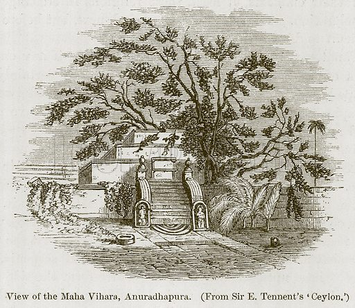 View of the Maha Vihara, Anuradhapura. Illustration for History of Indian and Eastern Architecture by James Fergusson (John Murray, 1876).
