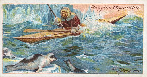 Eskimo Hunting Seal. Illustration for early 20th century cigarette card.