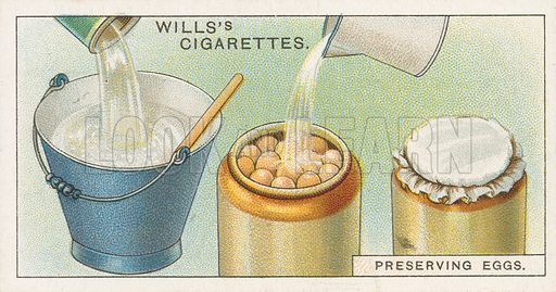 Preserving Eggs. Illustration for early 20th century cigarette card.