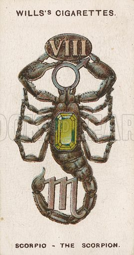 Scorpio - The Scorpion. Illustration for early 20th century cigarette card.