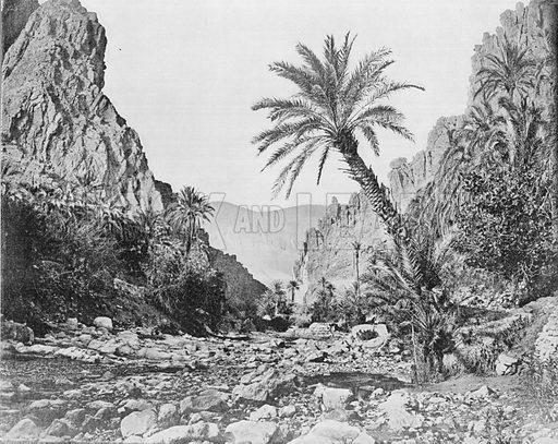 Algerie – Les Gorges D'El-Kantara. Photograph for Le Panorama Merveilles de France (De Neurdein, c 1895).