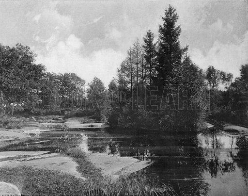 Foret de Fontainebleau - La Mare aux Pigeons. Photograph for Le Panorama Merveilles de France (De Neurdein, c 1895).