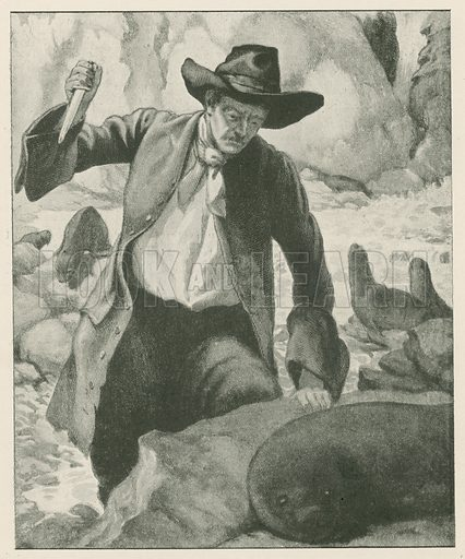 """A Man could Come Quite Close up to the Seals."" Illustration for Chatterbox annual (Wells Gardner, early 20th century)."