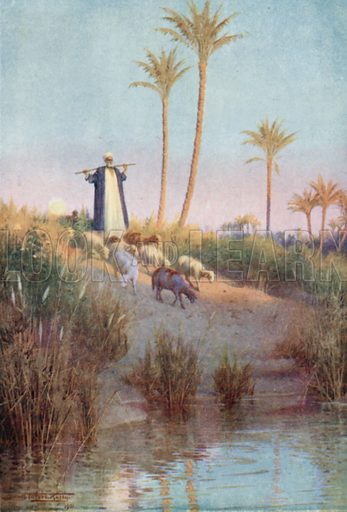 By Still Waters. Illustration for Egypt (A&C Black, 1904).