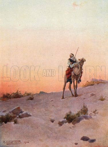 A Desert Scout. Illustration for Egypt (A&C Black, 1904).