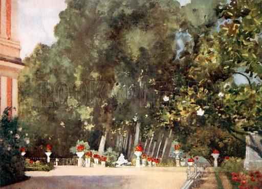 The Magnolia Tree, Aranjuez. Illustration for Royal Palaces & Gardens (A&C Black, 1916).