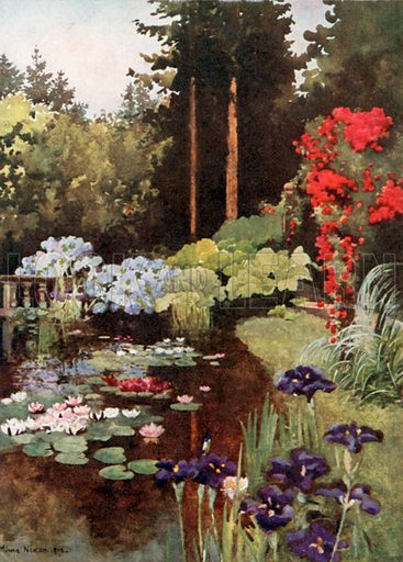 The Pond, Wolfsgarten. Illustration for Royal Palaces & Gardens (A&C Black, 1916).