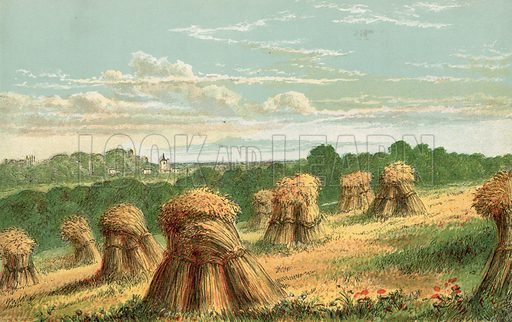 Harvest. Illustration for Aunt Louisa's Sunday Picture Book, printed in Colours by Kronheim (Frederick Warne, c 1890).