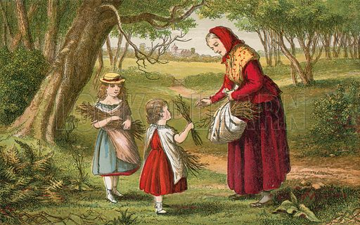 Collecting fire wood. Illustration for Aunt Louisa's Sunday Picture Book, printed in Colours by Kronheim (Frederick Warne, c 1890).