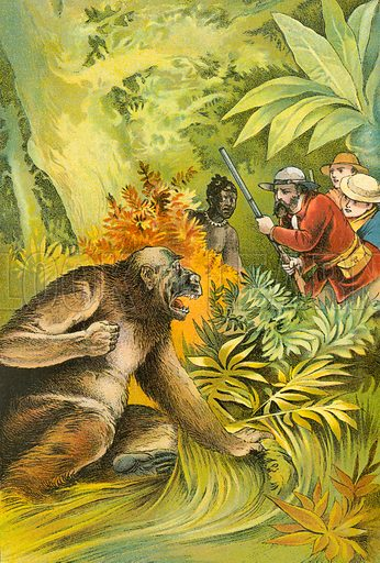 Our first gorilla. Illustration for The Gorilla Hunters by Robert Michael Ballantyne (T Nelson, 1893).