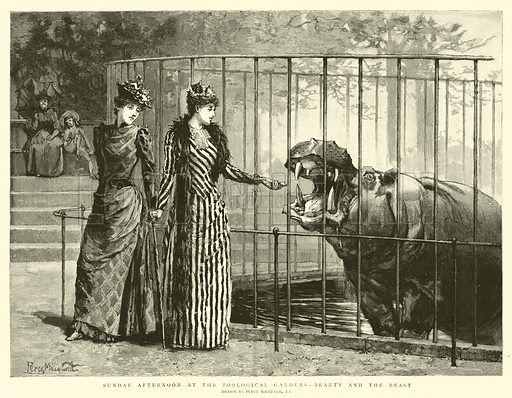 Sunday Afternoon at the Zoological Gardens, Beauty and the Beast. Illustration for The Graphic, 21 November 1891.