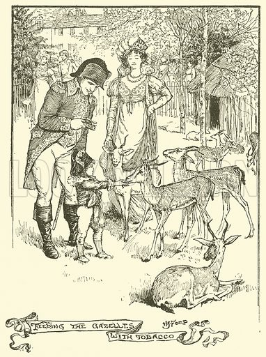 Feeding the Gazelles with Tobacco. Illustration for The Book of Princes and Princesses by Mrs Lang (Longmans, 1908).